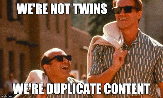 twins seo meme